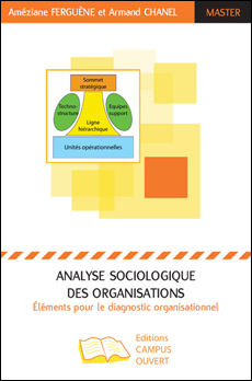 17-analyse-sociologique-organisations